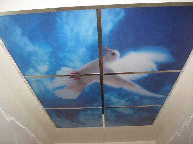 пласт панели с фотопечатью на потолок узнать